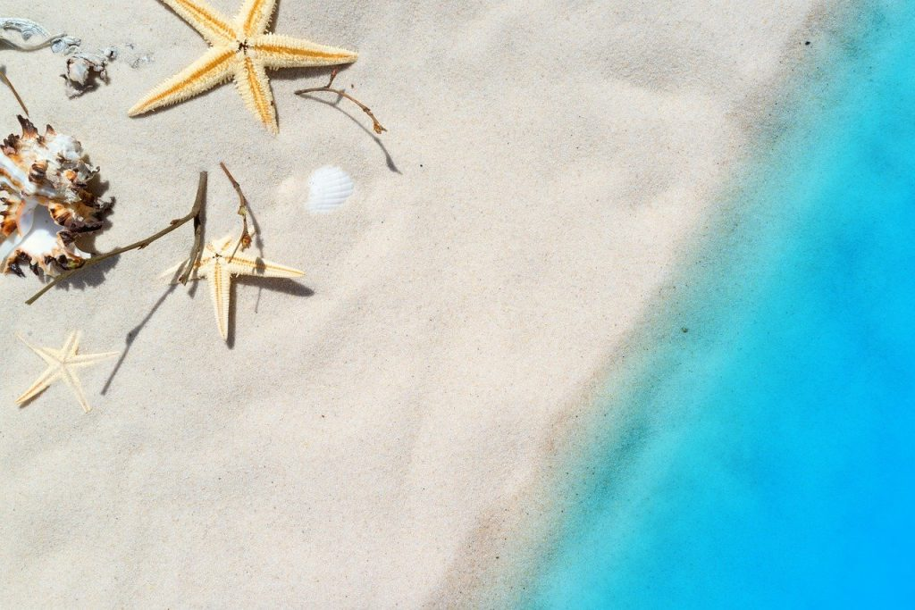 A beach seen from above, clear waters, starfish on the sand