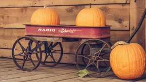 Cart filled with pumpkins