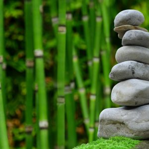 A peaceful zen garden with bamboo and stones in a pile.